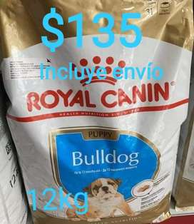 Royal Canin Bull Dog
