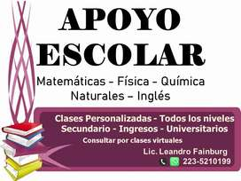 Clases Particulares - Virtuales