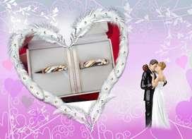 Pareja de anillos de matrimonio bañados en oro 35.00