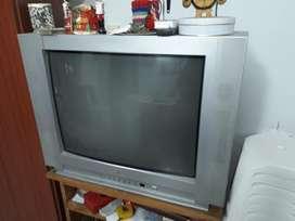 Vendo Televisión 29 Pulgadas Semi Plana