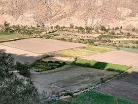 Terreno valle Chilina 80 dólares m2