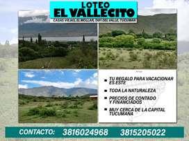 VENTA Loteo El Vallecito (El Mollar, Tucumán)