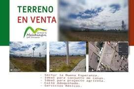ADQUIERE TU TERRENO MALCHINGUI (PEDRO MONCAYO) 5102 m²