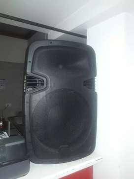 """Bafle-cabina de sonido-parlante. Grande 15"""""""