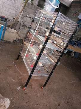 Jaulas para diferentes tipos de animal
