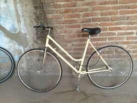 Bici de dama vintage