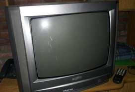 Televisor Sanyo 21'