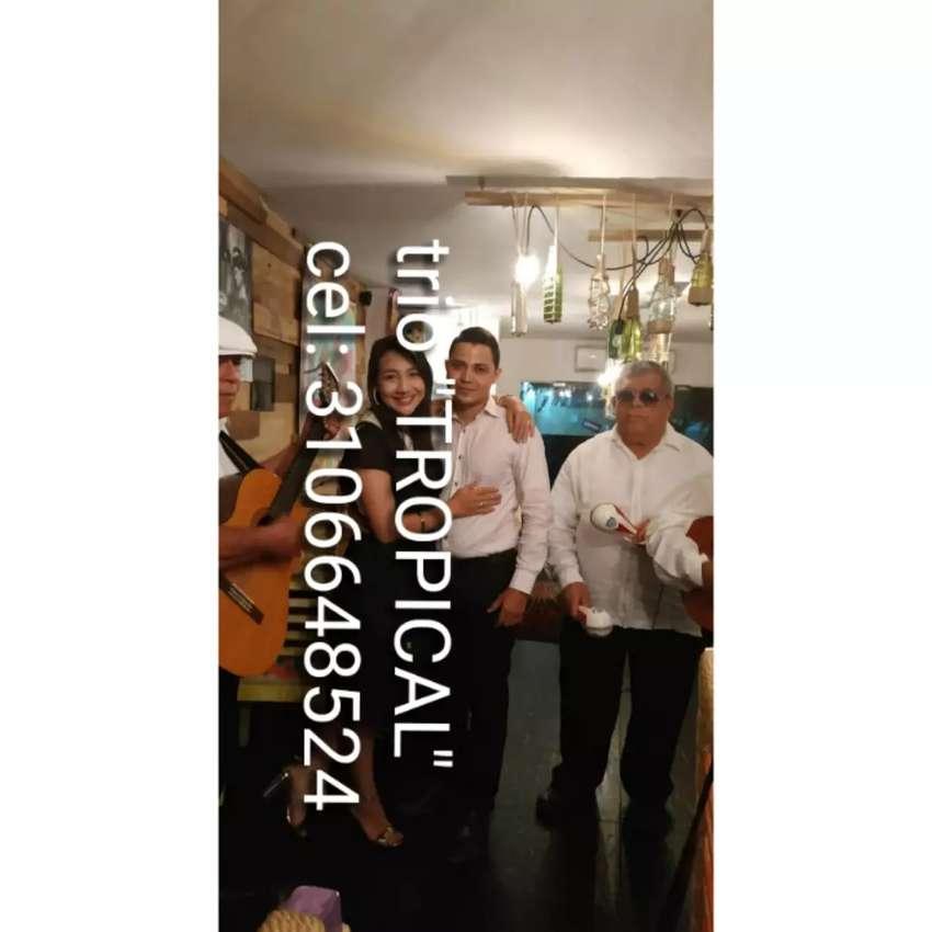 Brisas tropical《Trio serenata 》 0