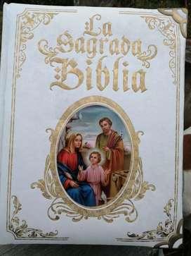 BIBLIA SAGRADA BIBLIA EDICIÓN PAPA FRANCISCO CON LOMO DE HOJAS DORADAS