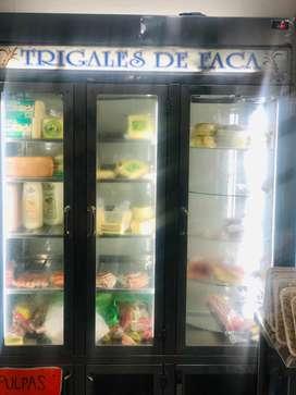 Se vende nevera-refrigeradora vertical
