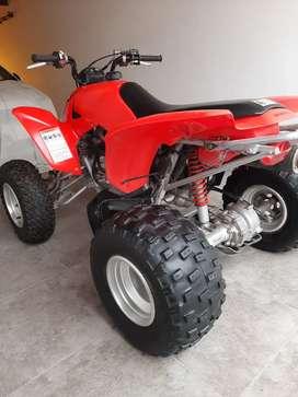 Cuatriciclo TRX 250