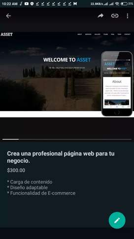 Se crea páginas web