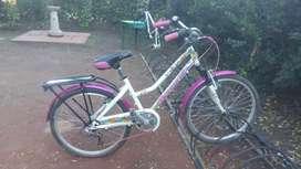 Bicicleta rodado 24/26