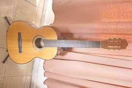Guitarra Acustica + Soporte de Piso + Estuche Semiduro + 5 Pic
