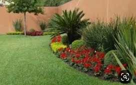 Busco  para realizar tareas de jardinería / mantenimiento general.