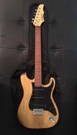Vendo o cambio, guitarra electrica