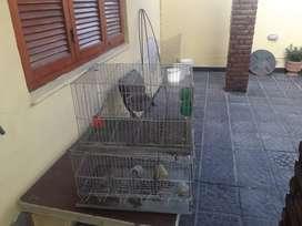 Jaula para animales