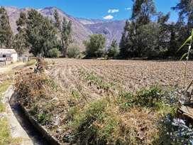 Terreno de cultivo en Caraz - Áncash