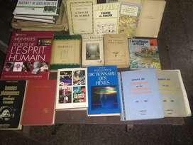 Lote de libros variados ,en francés.