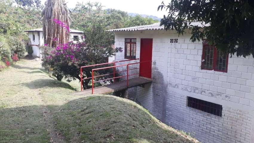 Se vende espectacular finca de 20 cuadras ubicada en la vereda el Guacamayo a 45 minutos de Chinchiná