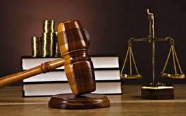 Prácticante de Derecho de 8vo ciclo Area Penal