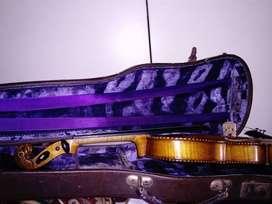 violin aleman profesional