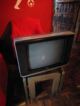 Televisión Tekno 21 Pulgadas Buen Estado