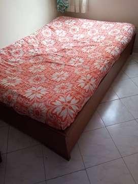 Vendo cama en cedro