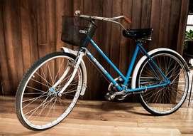 Bicicleta clasica X-ray