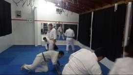 Clases de Aikido Arte Marcial Japonesa