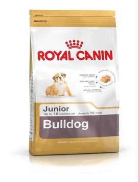 Royal Canin 12kg Para Bulldog Adulto-Junior