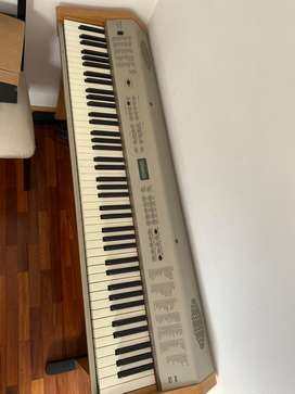 Piano Ringway pdp300 88teclas