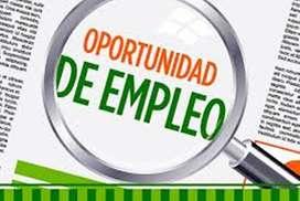 Oferta laboral docentes de idiomas