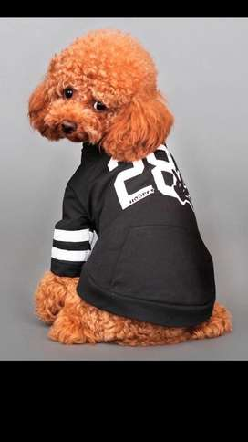 Camisa para Perros Talla Xl