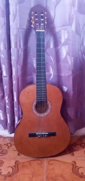 Se vende una Guitarra