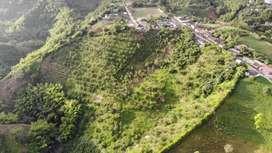 Vendo finca en Ulloa, Valle. 1 minuto del parque principal. 4 hectáreas  Aguacate y platano.