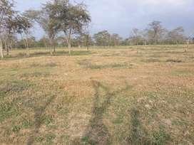 Se vende terreno en el sitio los pachones de la parroquia la estancilla