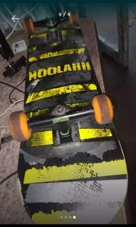 Skate Moolah$