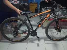 Bicicleta taon rodado 29M