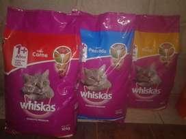 Oferta whiskas! ,
