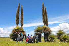 TOUR A VILCASHUAMAN FULL DAY