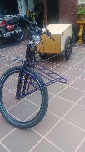 Bicicleta   Trailer