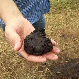 Abono 100 por ciento orgánico solido y liquido NO ES ABONO HECHO CON HECES DE ANIMALES.