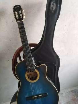 Guitarra acústica con su estuche
