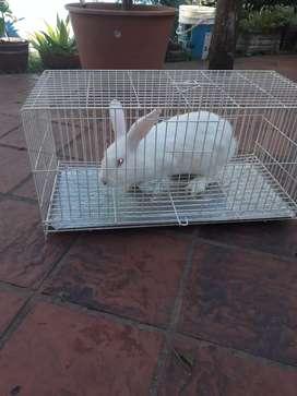 Jaula para conejos 63x30x30