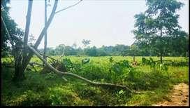 20 hectáreas... Terreno plano con quebrada de aguas cristalinas.
