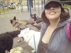 Paseo de perros Suba