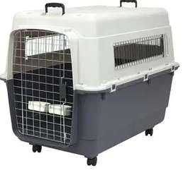 Canil,  Kennel L80