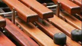 marimba pura union tropical de los hermanos lopez