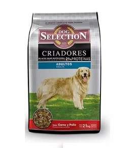 Dog selection criadores